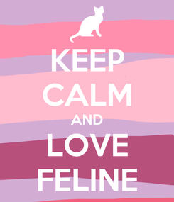 Poster: KEEP CALM AND LOVE FELINE
