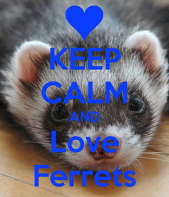 Poster: KEEP CALM AND Love Ferrets