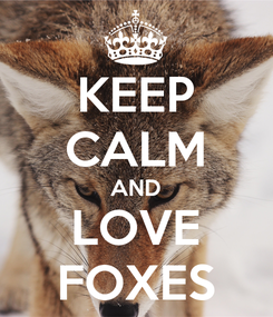 Poster: KEEP CALM AND LOVE FOXES