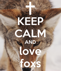 Poster: KEEP CALM AND love foxs