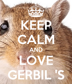 Poster: KEEP CALM AND LOVE GERBIL 'S