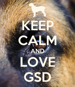 Poster: KEEP CALM AND LOVE GSD
