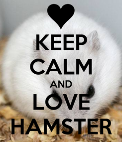 Poster: KEEP CALM AND LOVE HAMSTER