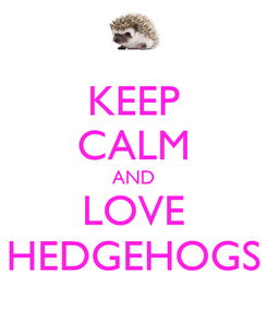 Poster: KEEP CALM AND LOVE HEDGEHOGS