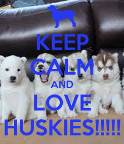 Poster: KEEP CALM AND LOVE HUSKIES!!!!!