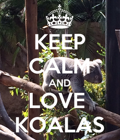 Poster: KEEP CALM AND LOVE  KOALAS