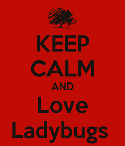 Poster: KEEP CALM AND Love Ladybugs