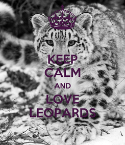 Poster: KEEP CALM AND LOVE LEOPARDS
