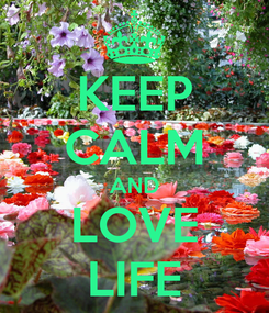Poster: KEEP CALM AND LOVE LIFE