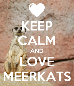 Poster: KEEP CALM AND LOVE MEERKATS