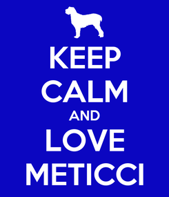 Poster: KEEP CALM AND LOVE METICCI