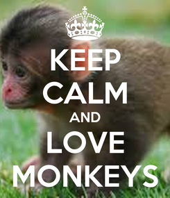 Poster: KEEP CALM AND LOVE MONKEYS