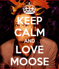 Poster: KEEP CALM AND LOVE MOOSE