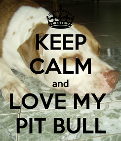 Poster: KEEP CALM and LOVE MY  PIT BULL