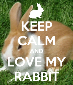 Poster: KEEP CALM AND LOVE MY RABBIT