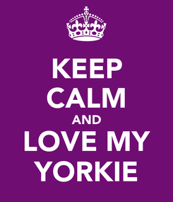 Poster: KEEP CALM AND LOVE MY YORKIE