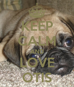 Poster: KEEP CALM AND LOVE OTIS