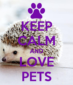 Poster: KEEP CALM AND LOVE PETS