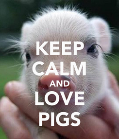 Poster: KEEP CALM AND LOVE PIGS