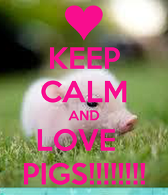 Poster: KEEP CALM AND LOVE   PIGS!!!!!!!!