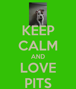 Poster: KEEP CALM AND LOVE PITS