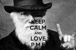 Poster: KEEP CALM AND LOVE P.M.E
