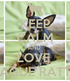 Poster: KEEP CALM AND  LOVE  PRAGUE RATTER