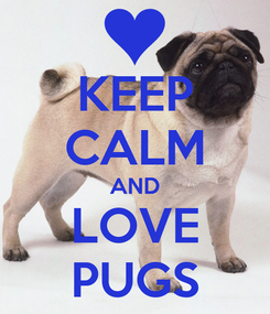 Poster: KEEP CALM AND LOVE PUGS