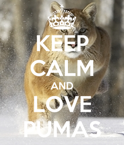 Poster: KEEP CALM AND LOVE PUMAS