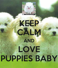 Poster: KEEP CALM AND LOVE PUPPIES BABY