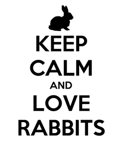 Poster: KEEP CALM AND LOVE RABBITS
