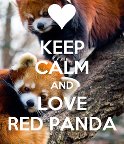 Poster: KEEP CALM AND LOVE RED PANDA