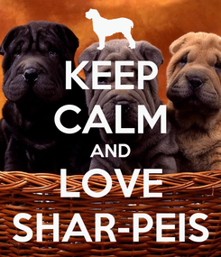 Poster: KEEP CALM AND LOVE SHAR-PEIS