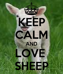 Poster: KEEP CALM AND LOVE  SHEEP