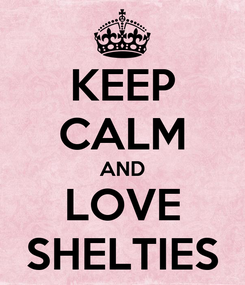 Poster: KEEP CALM AND LOVE SHELTIES