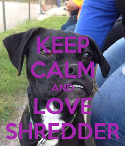 Poster: KEEP CALM AND LOVE SHREDDER
