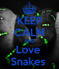 Poster: KEEP CALM AND Love  Snakes
