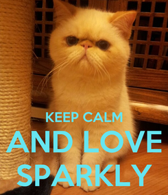 Poster:   KEEP CALM AND LOVE SPARKLY