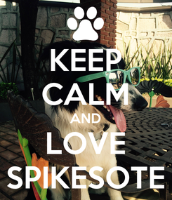 Poster: KEEP CALM AND LOVE SPIKESOTE