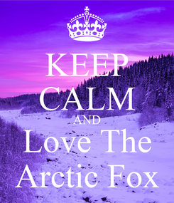 Poster: KEEP CALM AND Love The Arctic Fox