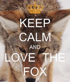 Poster: KEEP CALM AND LOVE  THE FOX
