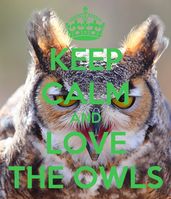 Poster: KEEP CALM AND LOVE THE OWLS