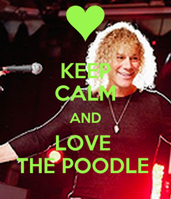 Poster: KEEP CALM AND LOVE  THE POODLE