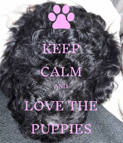 Poster: KEEP CALM AND LOVE THE PUPPIES