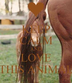 Poster: KEEP CALM AND LOVE THIS ANIMAL