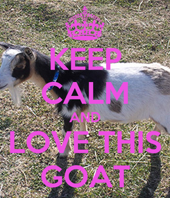 Poster: KEEP CALM AND LOVE THIS GOAT