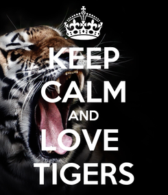 Poster: KEEP CALM AND LOVE  TIGERS