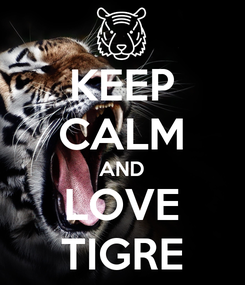 Poster: KEEP CALM AND LOVE TIGRE