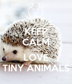 Poster: KEEP CALM AND LOVE TINY ANIMALS