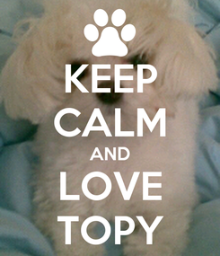 Poster: KEEP CALM AND LOVE TOPY